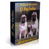 Libro Electrónico El  Pug Carlino Adiestramiento Y Más