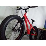 Bicicleta Rali (fat Bike)¿modelo: Monster.